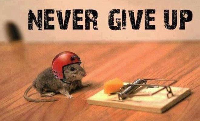 FGC_motivation